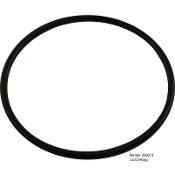 Lid O-Ring (Challenger/Whisperflo) Pentair(350013)* Original