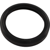 Light Lens Gasket, Hayward, SPX0590G